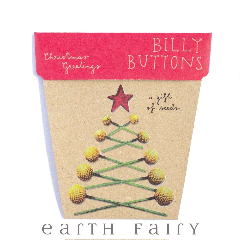 Billy Buttons Christmas Greetings - Gift of Seeds | Fairy Books & Stationery | Earth Fairy