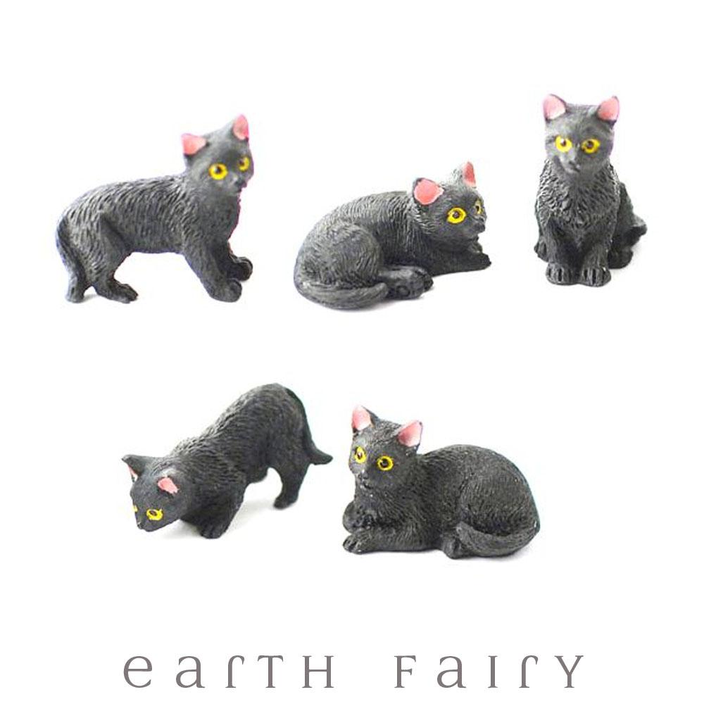 Black Cats - Set of 5