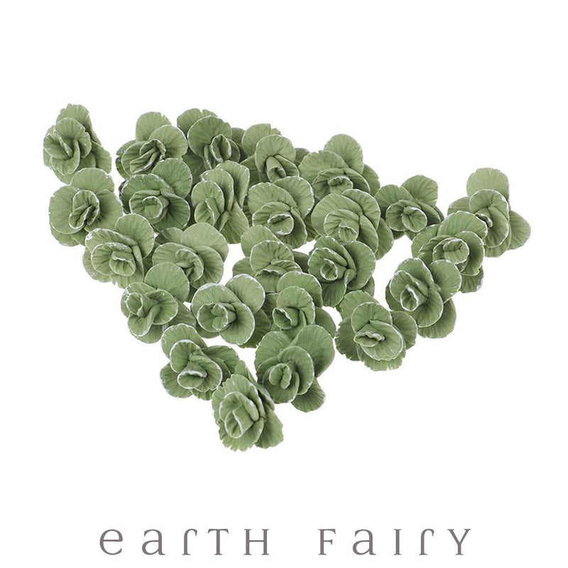Cabbage | Fairy Garden Miniatures - Australia | Earth Fairy