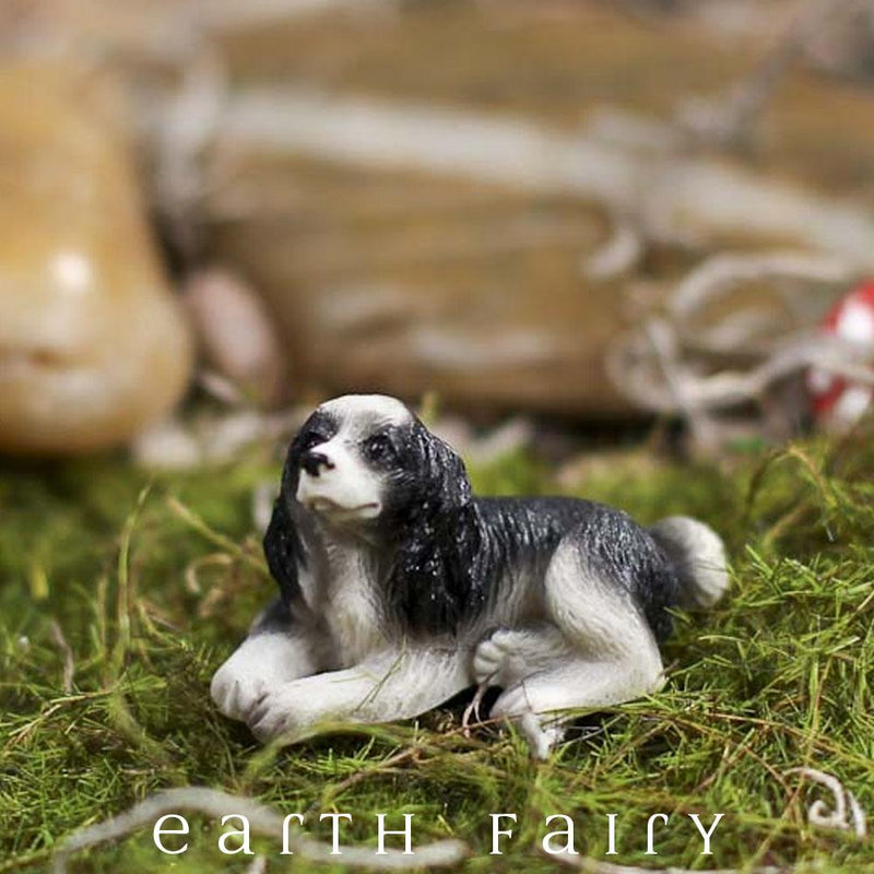 Miniature Cocker Spaniel Dog from The Fairy Garden Miniature Animal Collection by Earth Fairy
