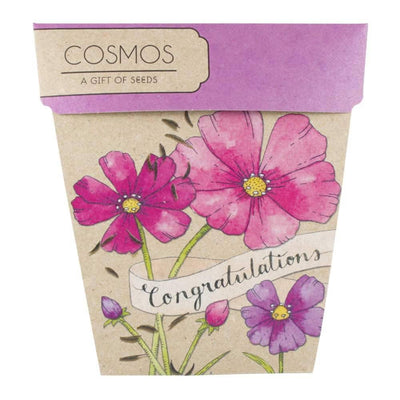 Congratulations - Cosmos Gift of Seeds  - Books & Stationery - Earth Fairy
