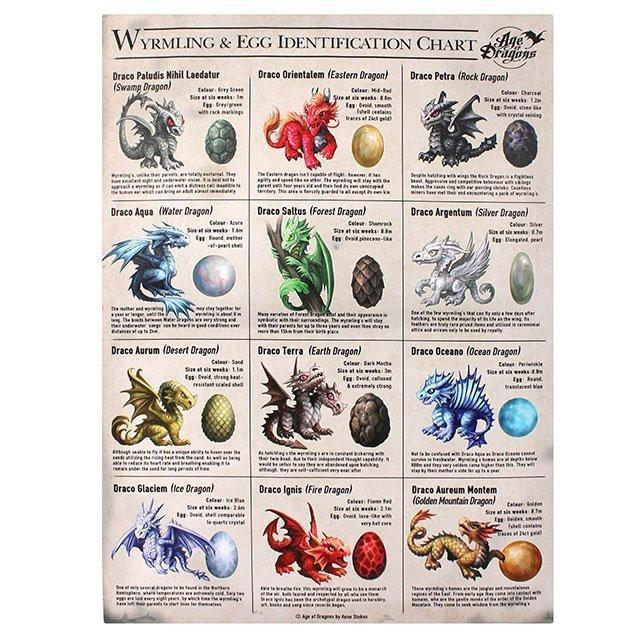 Dragon Wrymling & Egg Identification Chart  - Room Accents - Earth Fairy