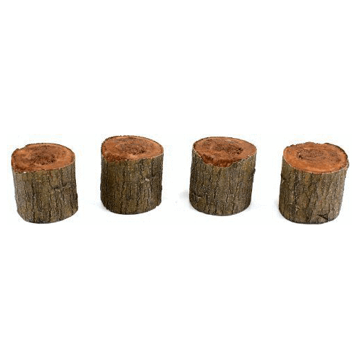 Fairy Gardens Faux Wood Stools - Set of Four Earth Fairy