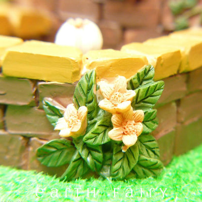 Fountain Pond - Yellow Flower Close Up | Fairy Garden Ponds - Australia | Earth Fairy