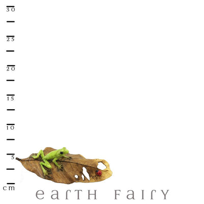 Frog & Ladybug on a Leaf with Scale Ruler | Fairy Gardens & Collectible Miniatures | Earth Fairy