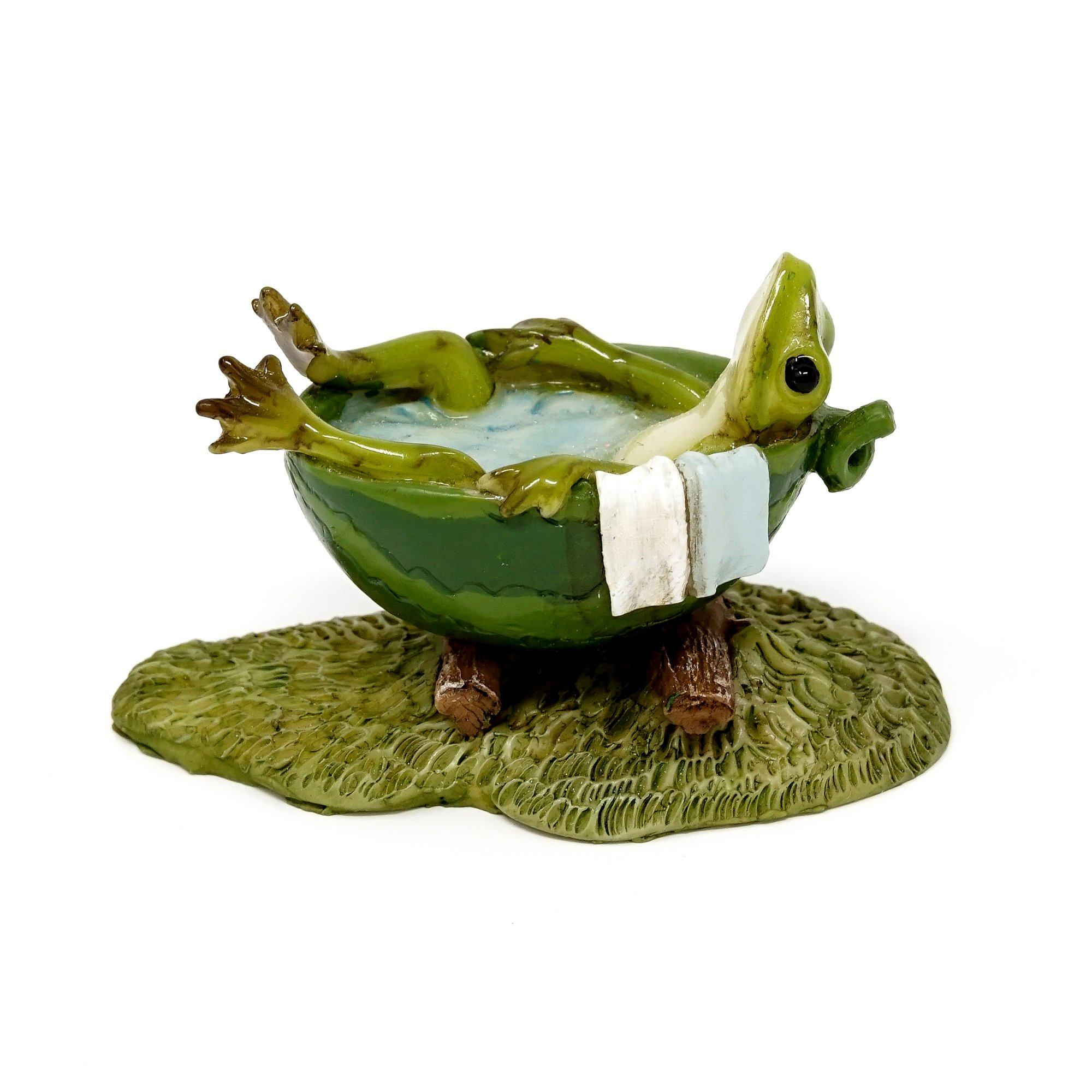 Frog Taking a Bath | Fairy Garden Animals - Australia | Earth Fairy