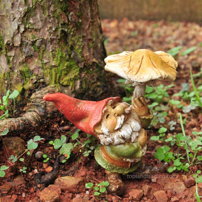 Garden Gnome with Mushroom Umbrella | Fairy Garden Figurines - Australia | Earth Fairy