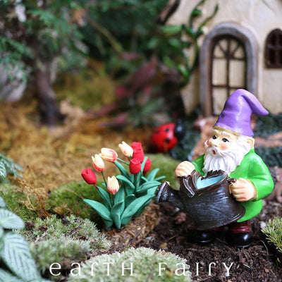 Gnome with Watering Can, displayed in a garden setting, from The Miniature Fairy Garden Gnome Collection by Earth Fairy