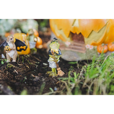 Halloween Frog in a Witch Costume | Fairy Garden Animals - Australia | Earth Fairy