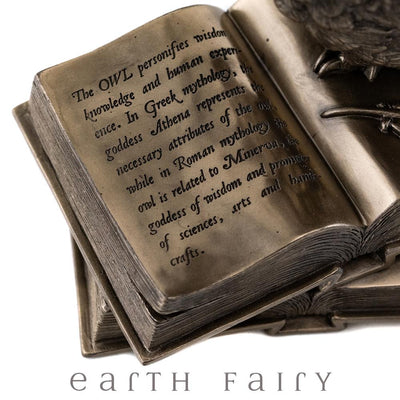 Owl on Books | Fairy Inspired Gifts & Decor - Australia | Earth Fairy