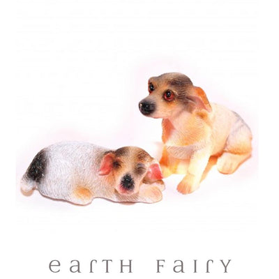 Pair of Jack Russell Terriers | Fairy Garden Miniatures | Earth Fairy