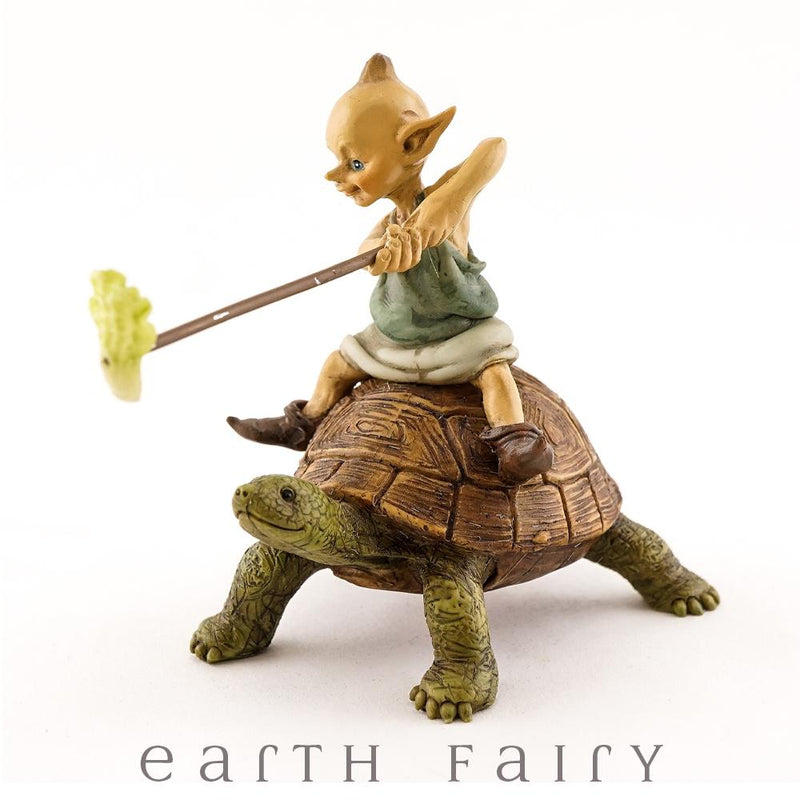 Pixie Riding a Turtle | Fairy Garden Figurines - Australia | Earth Fairy