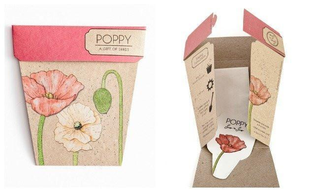Books & Stationery Poppy Gift of Seeds Earth Fairy