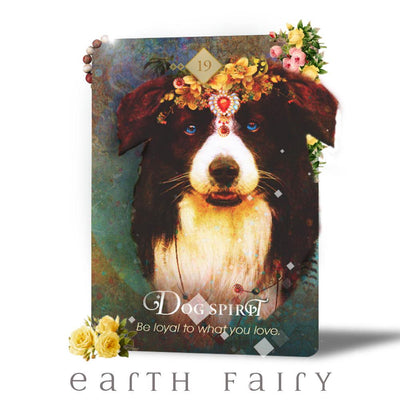 Spirit Animal Oracle Cards by Colette Baron-Reid | Fairy, Oracle & Tarot Cards | Earth Fairy