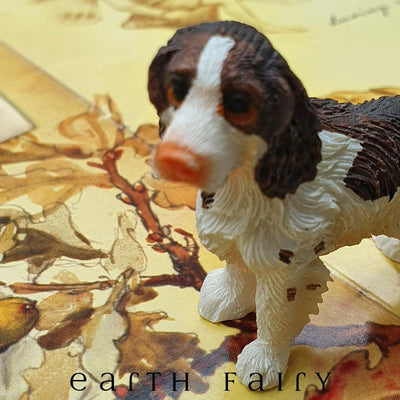 Springer Spaniel - Standing | Fairy Pets & Animals - Australia | Earth Fairy