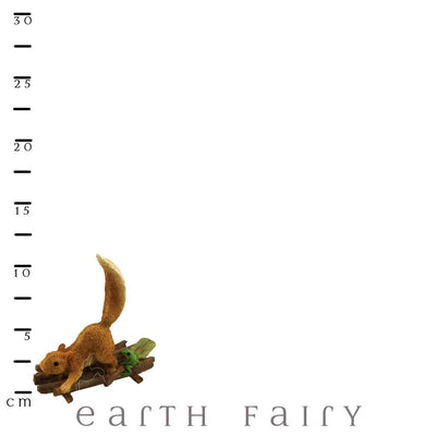 Squirrel on a Raft with Scale Ruler | The Enchanted Story Collection | Earth Fairy