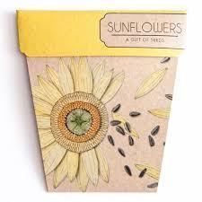 Books & Stationery Sunflower Gift of Seeds Earth Fairy