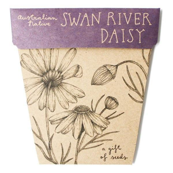 Books & Stationery Swan River Daisy Gift of Seeds Earth Fairy