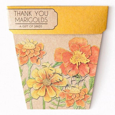 Books & Stationery Thank you - Marigold Gift of Seeds Earth Fairy