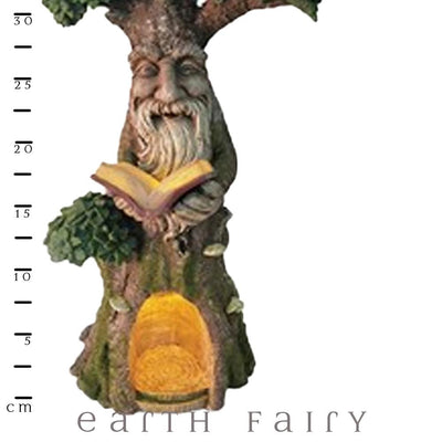 Wise Old Forest Tree - Extra Large - with Scale Ruler | Fairy Garden Landscaping - Australia | Earth Fairy