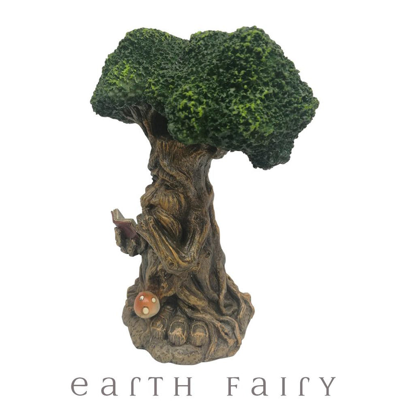 Wise Old Man Tree | Fairy Garden Landscaping - Australia | Earth Fairy