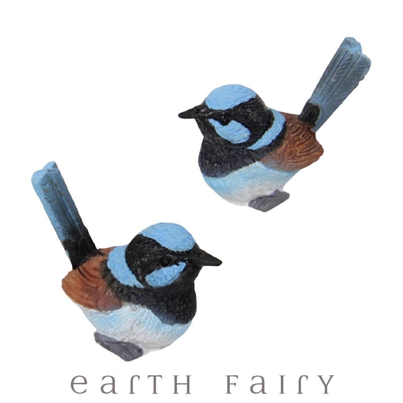 Wrens - Set of 2 from the Fairy Garden Miniatures & Collectibles Collection (Australia) by Earth Fairy