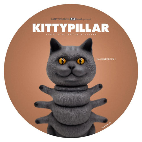 Kittypillar - The Chartreux