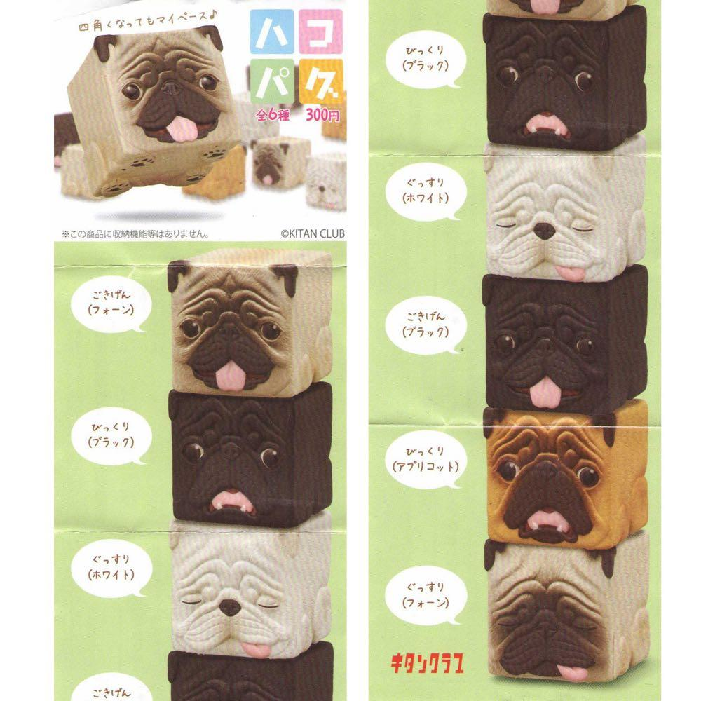 Box Pug Gachapon - Random