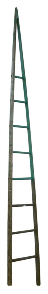12' Tall Antique Cherry Picking Orchard Ladder