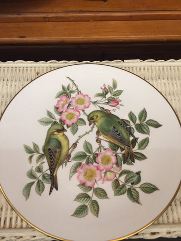 Birds Spode Plate - Jarred's Homegoods / Treasure Brokers  - 1