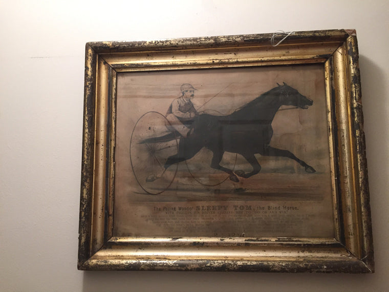 framed Currier and Ives Sleep Tom the race horse vintage print - Jarred's Homegoods / Treasure Brokers