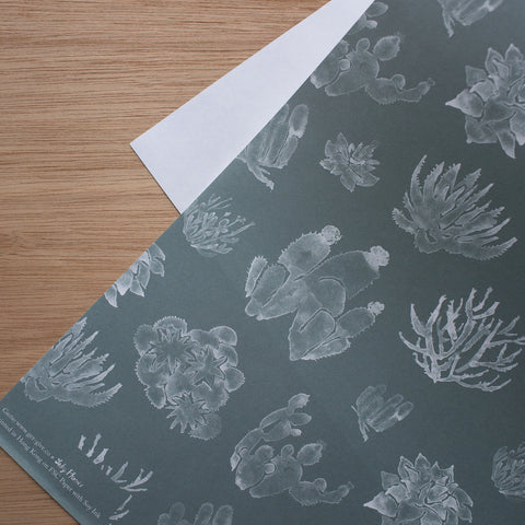 Cactus on eco-paper with soy ink x 3 sheets