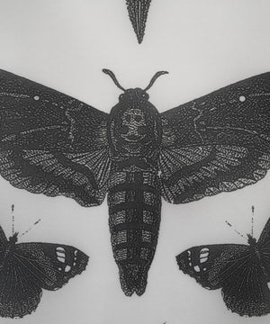 Load image into Gallery viewer, Moths Tapestry