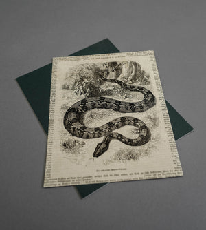 Load image into Gallery viewer, Python 1861 - Vintage Print