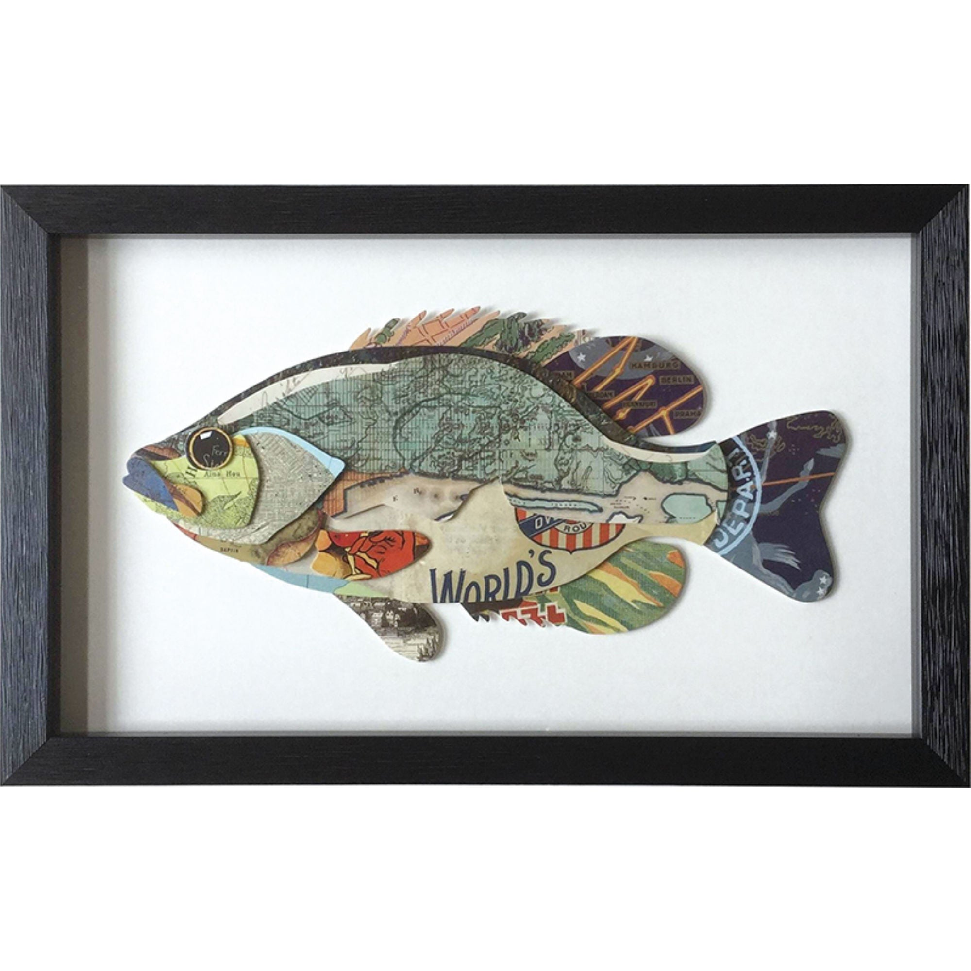 Framed Collage Picture of a Fish