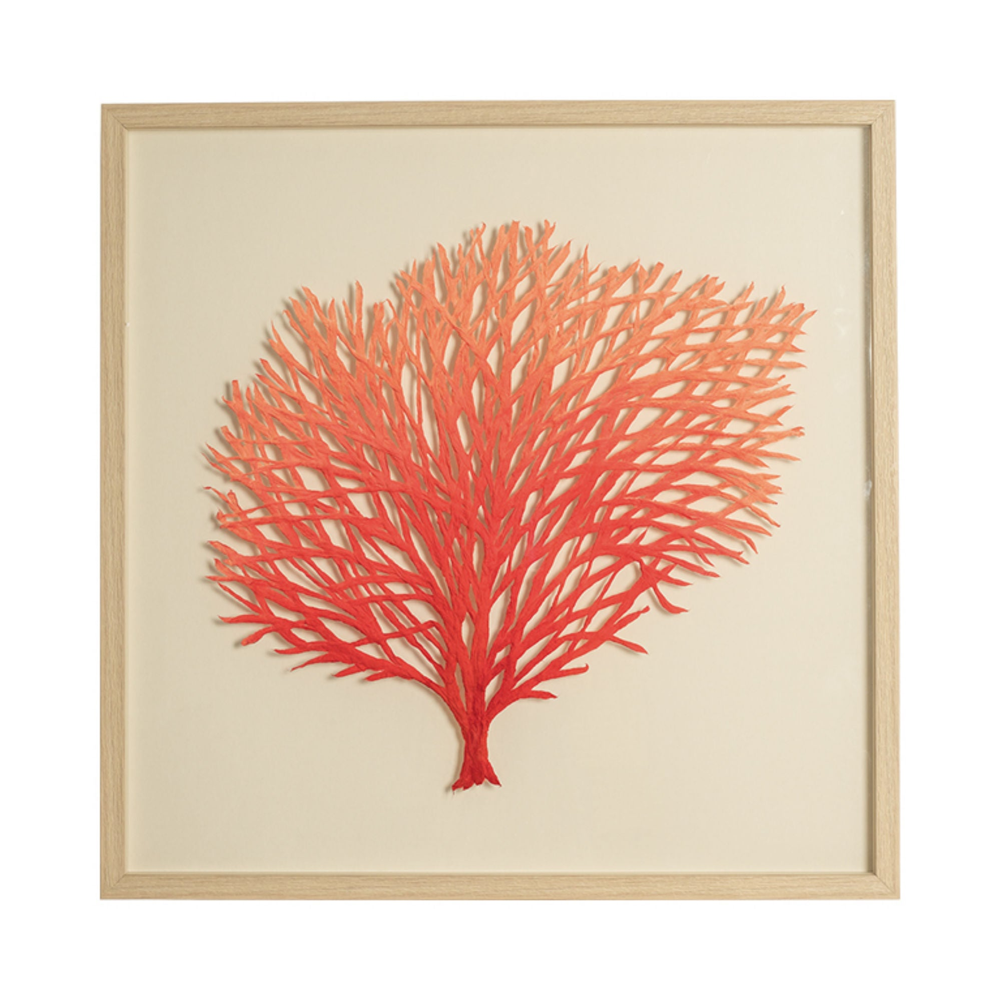 Framed Paper Cutout Picture - Coral in Red