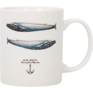 Batela Giftware-Mugs-Blue Whale Mug (Set of 4)