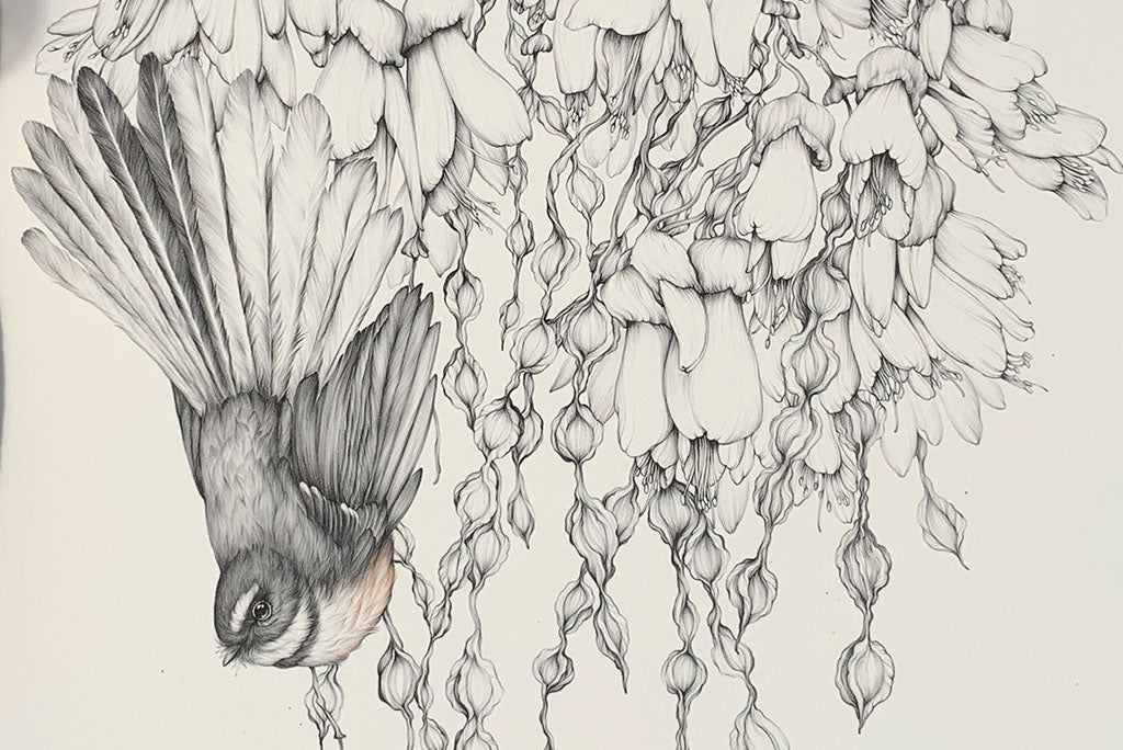 Katy Hayward and The Paper Rain Project, fantails