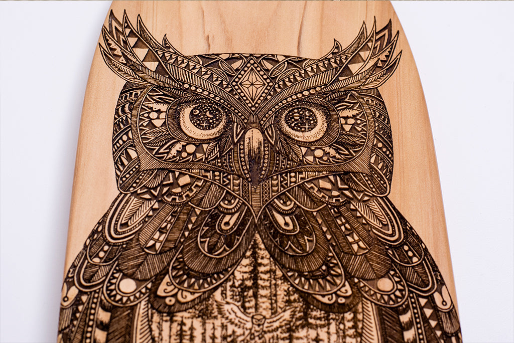 Owl, Tobias Illustrations on macrocarpa skateboard artwork by The Paper Rain Project