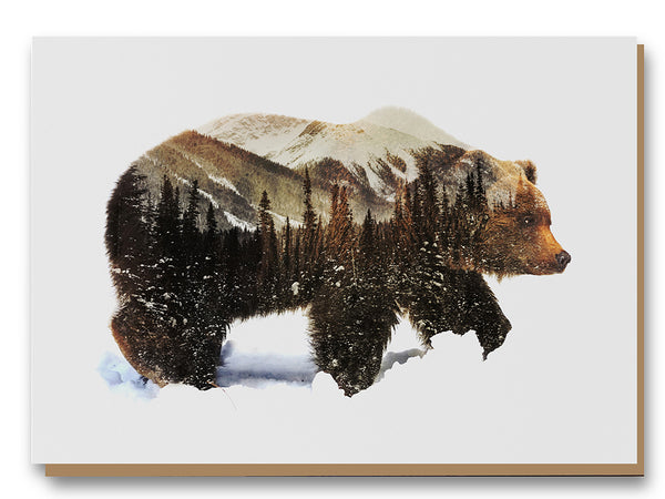 Illustrate Greeting Cards Arctic Grizzly Bear by Andreas Lies