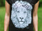Lion ~ Women's T-Shirt
