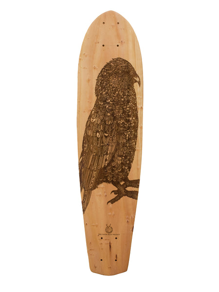 Kea - Tobias Illustrations // Macrocarpa Art Board