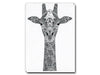 Tobias Illustrations greeting cards Twiga Giraffe