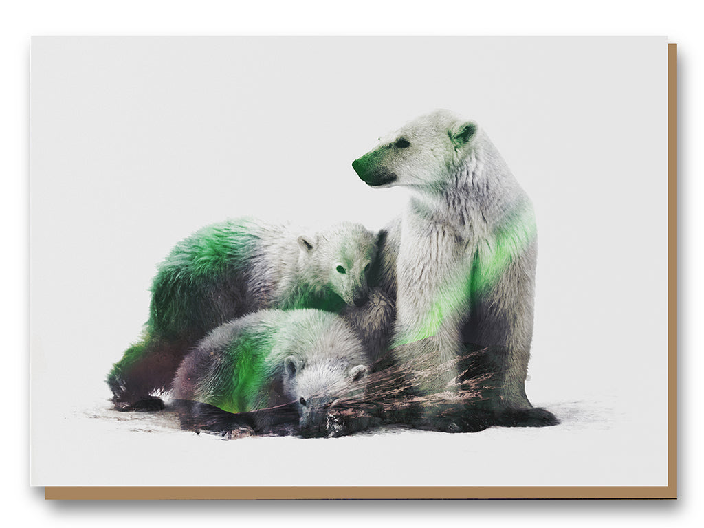 Illustrate Greeting Cards Arctic Polar Bear Family by Andreas Lies