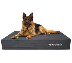 The Dog's Bed Orthopaedic Mattress Bed (Grey with Blue Trim)