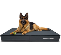 The Dog's Bed Orthopaedic Mattress Bed (Grey with Black Trim)