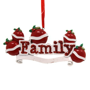 Personalized Ornaments FAMILY ORNAMENT- 5 Resin   Five Names OR597-5