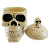 Tabletop Skull Box With Lid Halloween Tabletop