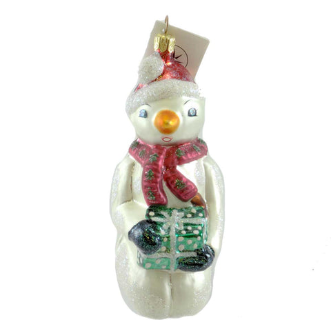 Christopher Radko A Cool Surprise Glass Ornament 20215