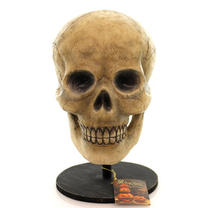 Halloween Bone Head Halloween Decor